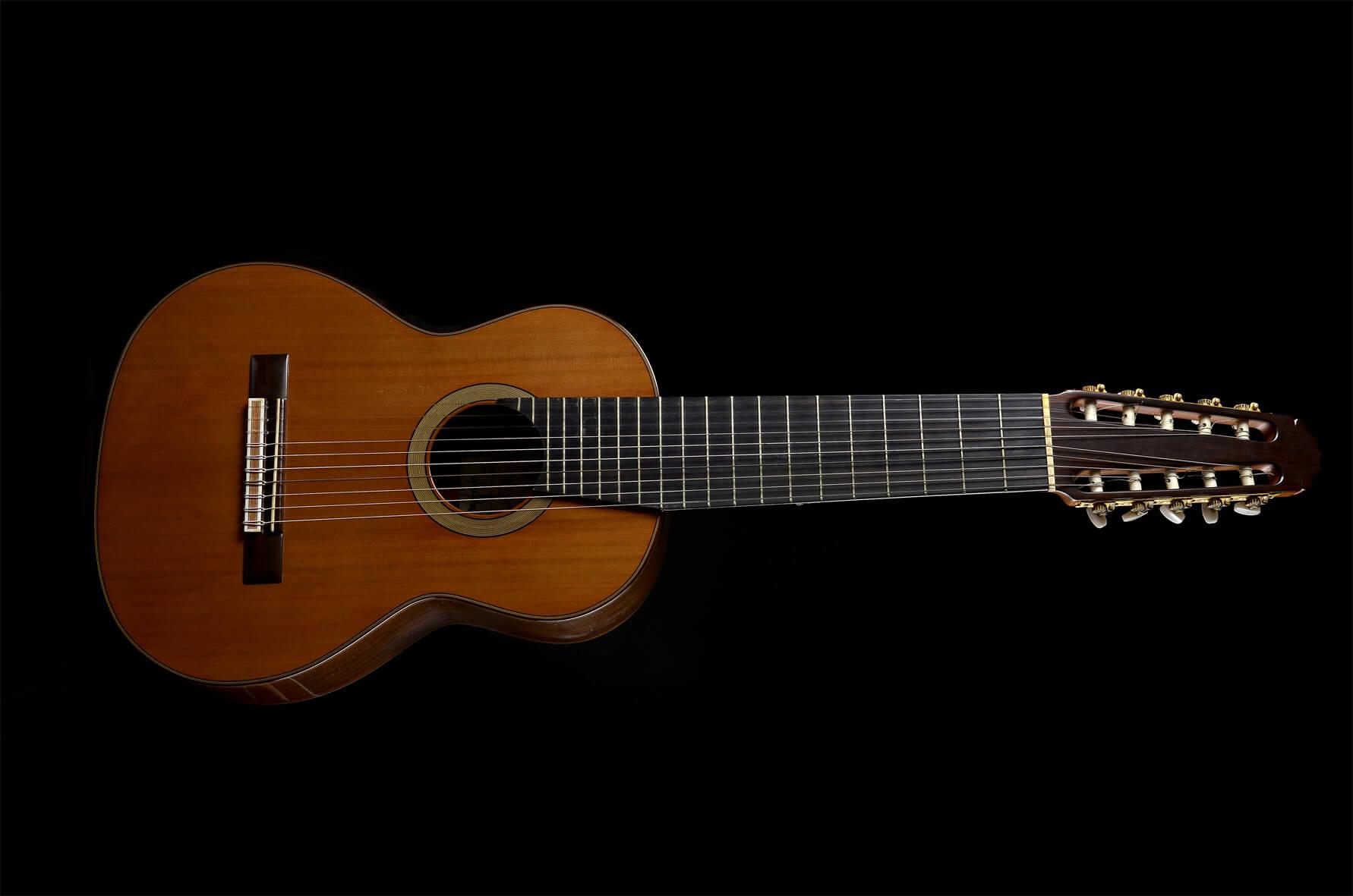 La evolución de la guitarra: la guitarra de diez cuerdas